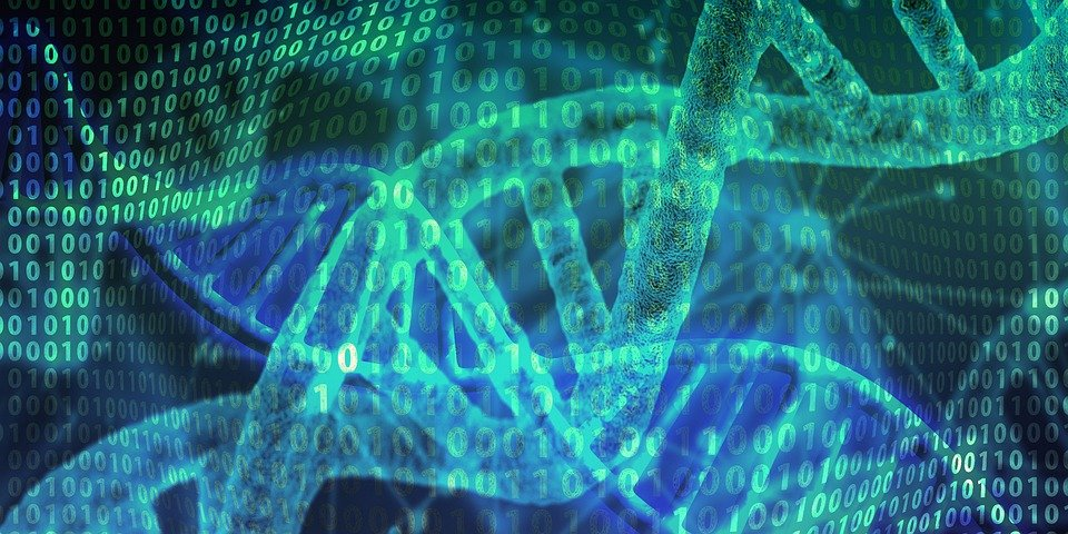 The DNA-Based Solution to Our Data Storage Crisis: Where It's at in 2020.